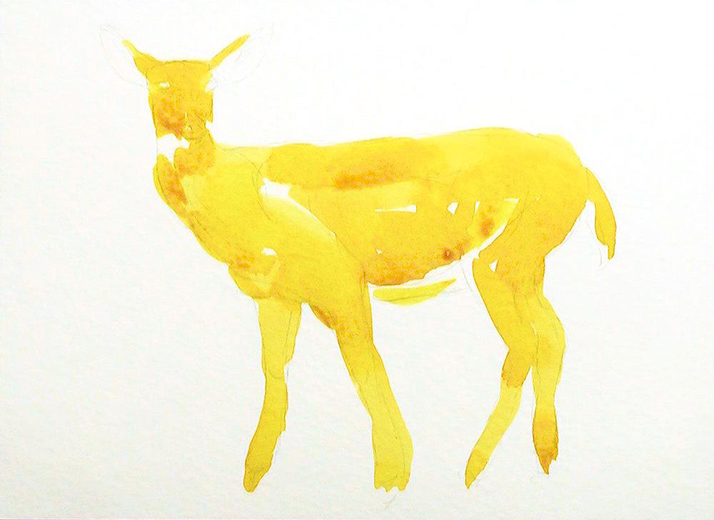 Christmas Card deer 1