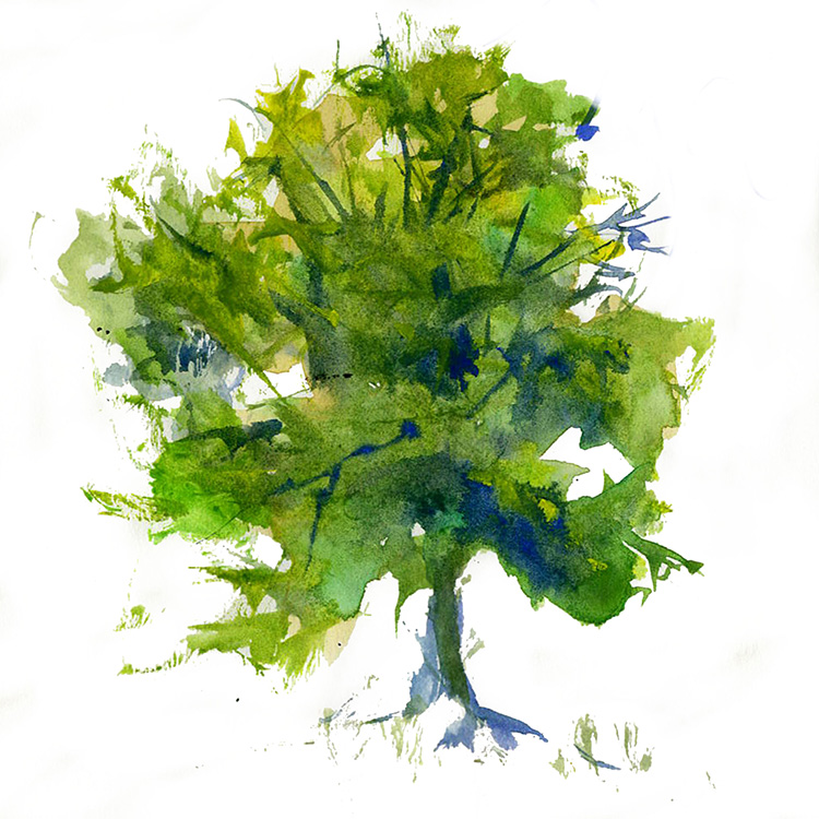 Watercolor Painting a Green Tree watercolor painting lesson