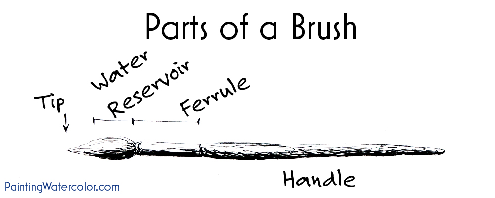 Parts of a Watercolor Painting Brush