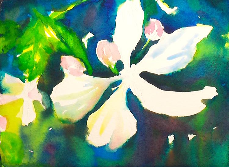 Painting Blackberry Flowers  Painting Tutorial 4