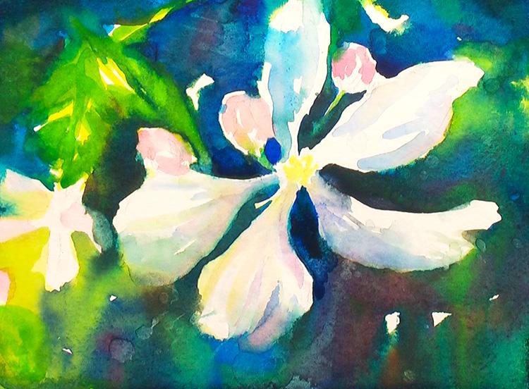 Painting Blackberry Flowers  Painting Tutorial 5