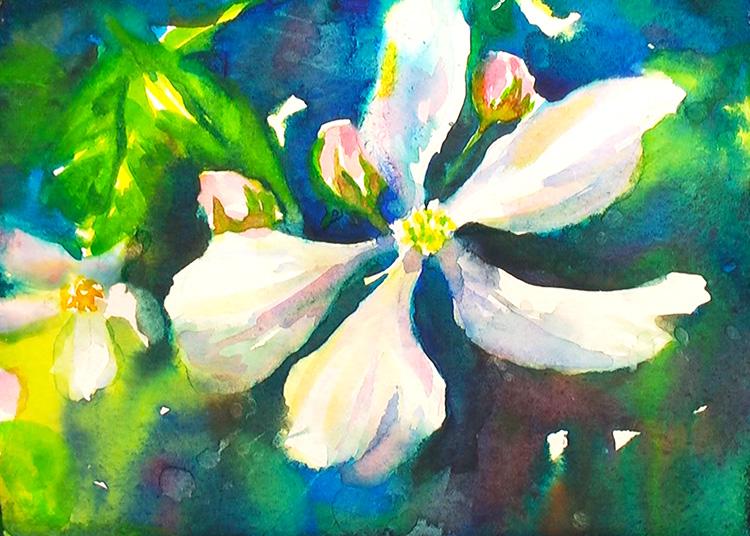 Painting Blackberry Flowers  Watercolor Painting Tutorial 6