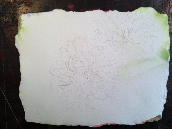 Dahlia Watercolor Painting Lesson 2