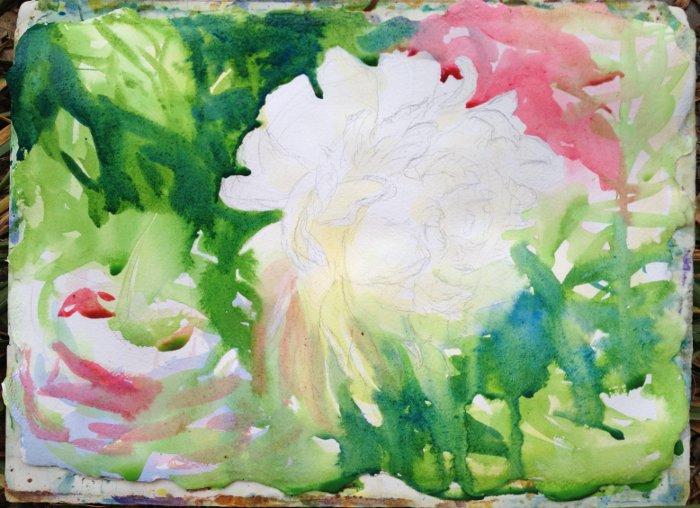 White Peony Painting Tutorial 3