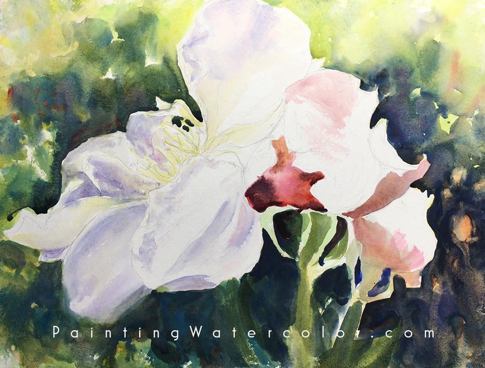 Roses Watercolor Painting Tutorial 4