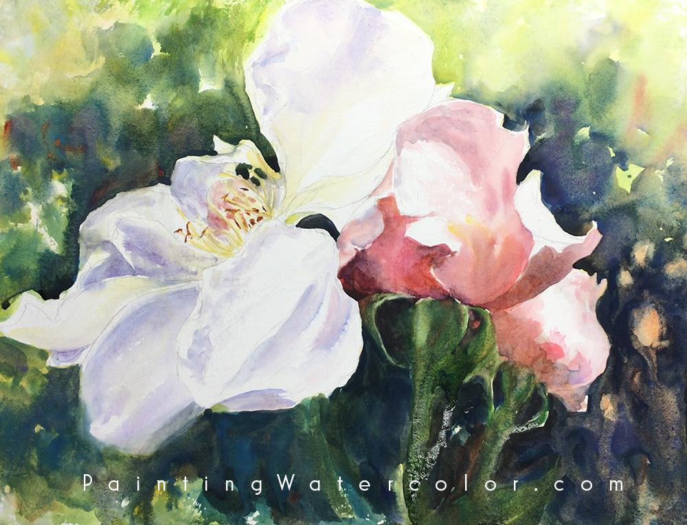 Roses Watercolor Painting Tutorial 5