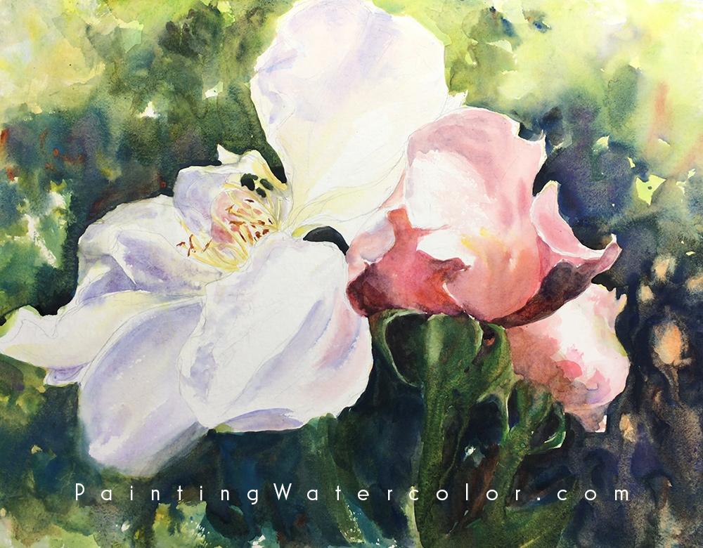 Roses Watercolor Watercolor Painting Tutorial 6