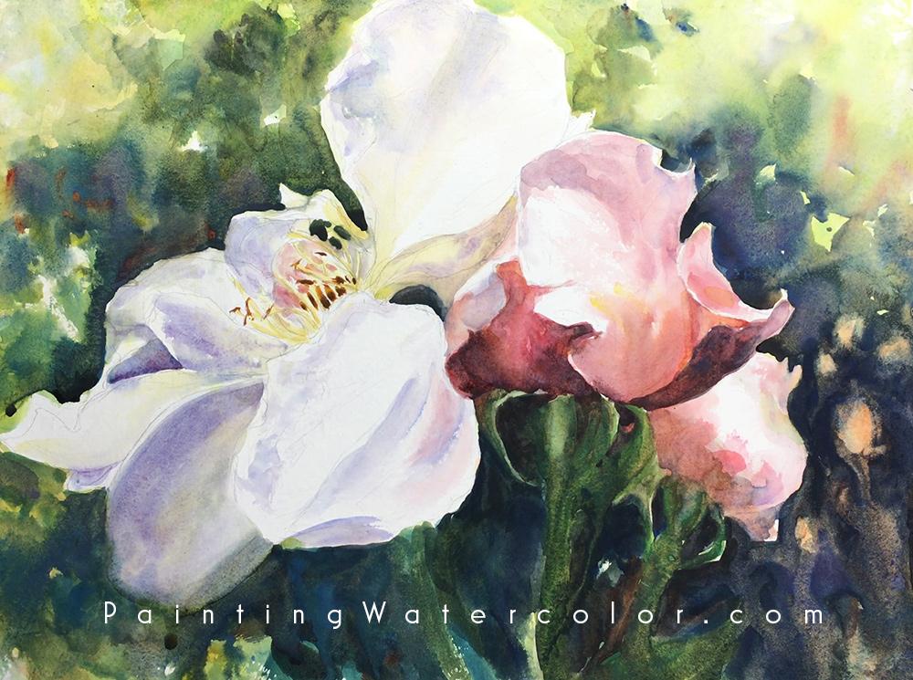 Roses Watercolor Watercolor Painting Tutorial 7
