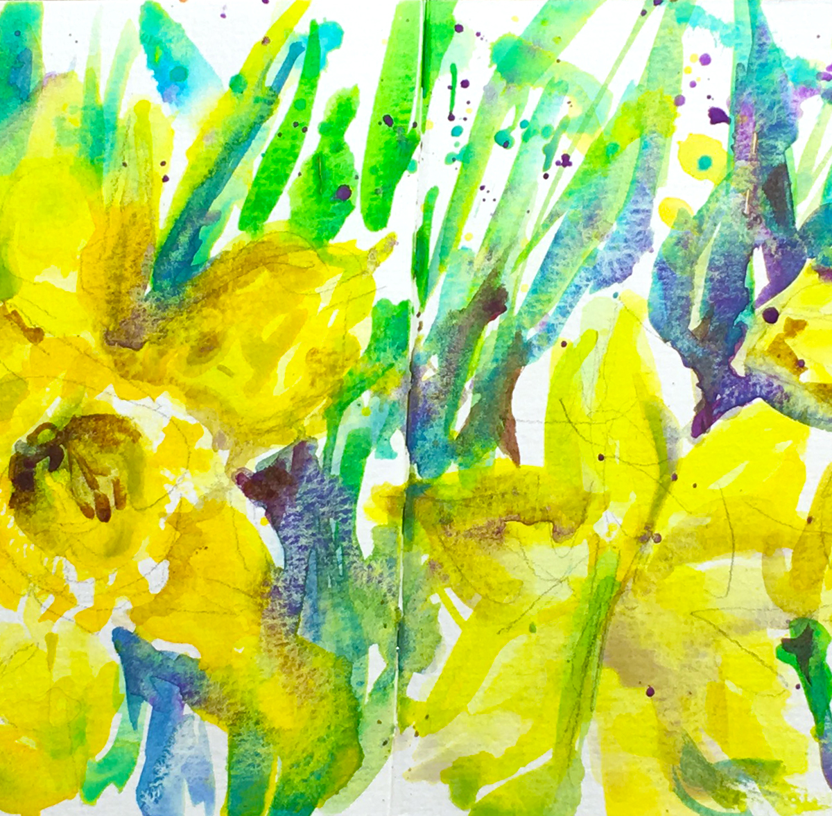 Daffodils Watercolor Sketch watercolor painting tutorial