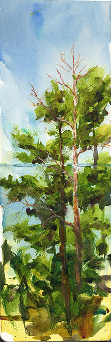 Trees Sketch before Sunset by Jennifer Branch