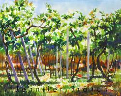 Italian vineyard watercolor painting