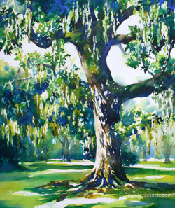 live oak watercolor painting