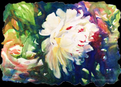 Peony flower watercolor painting by Jennifer Branch