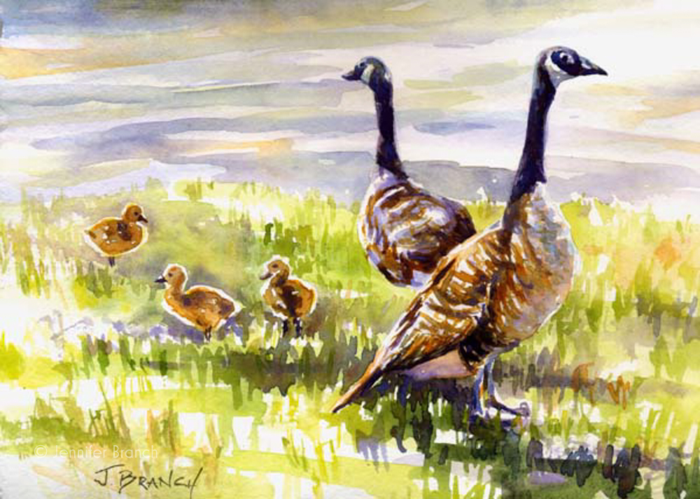 Canadian Geese watercolor painting