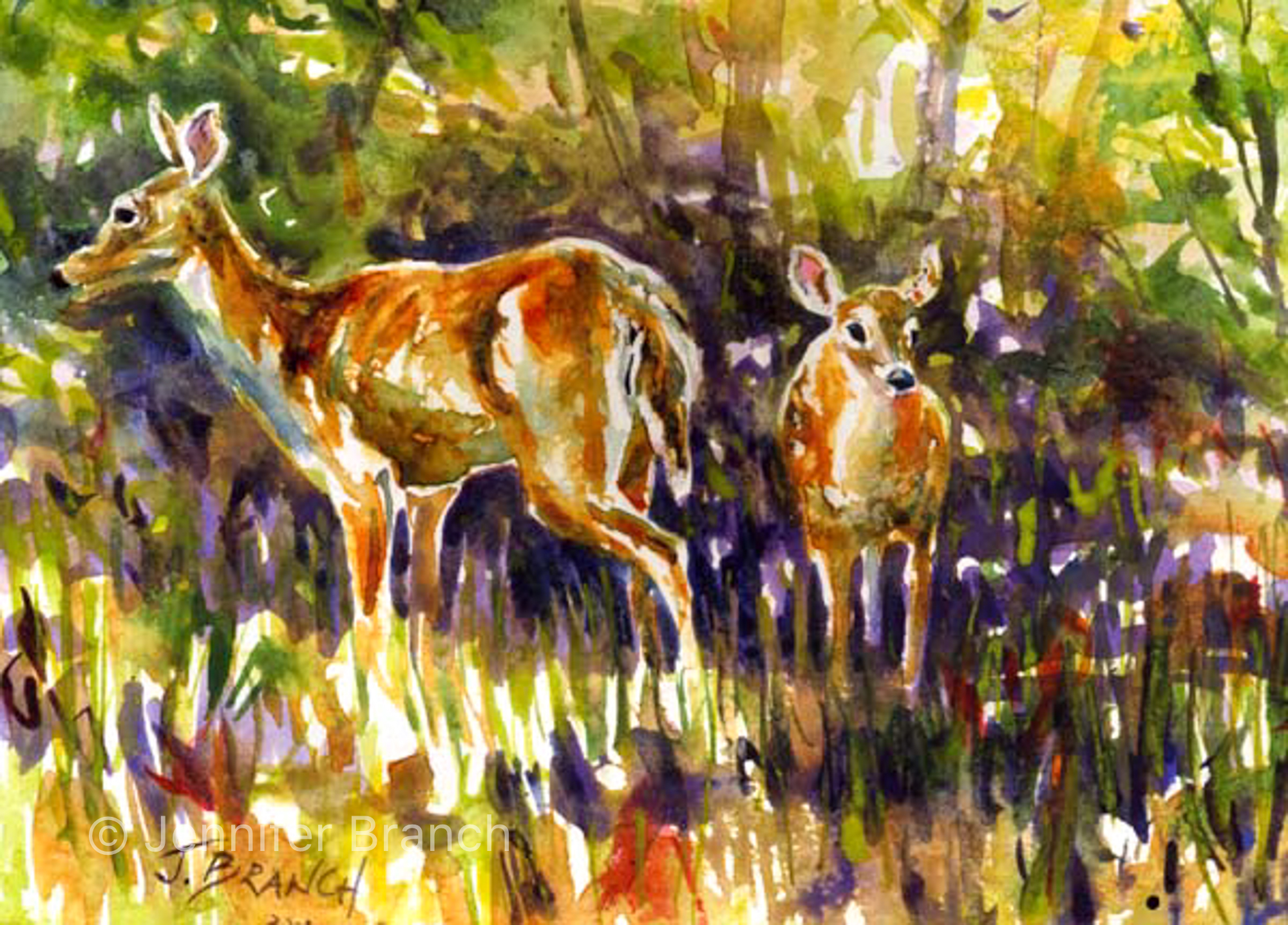 deer fawn watercolor painting by Jennifer Branch
