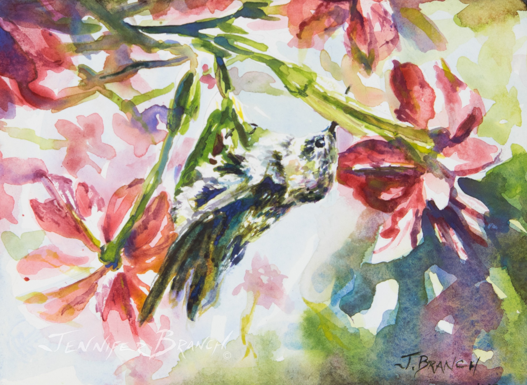 baby hummingbird watercolor painting by Jennifer Branch