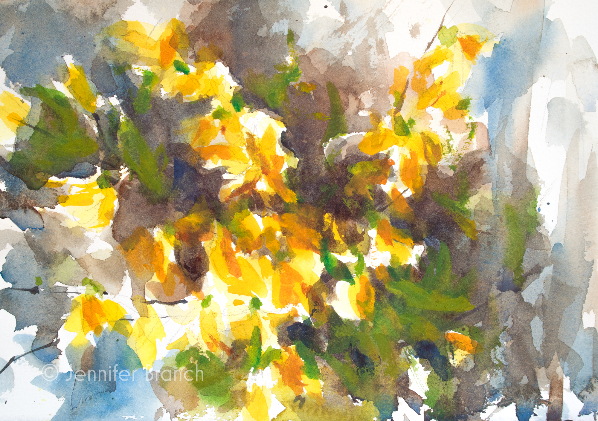 Forsythia Sketch Painting Tutorial watercolor painting lesson by Jennifer Branch