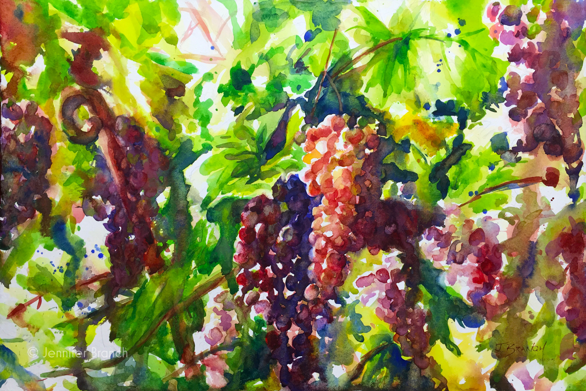 Grapevines watercolor painting in Italy