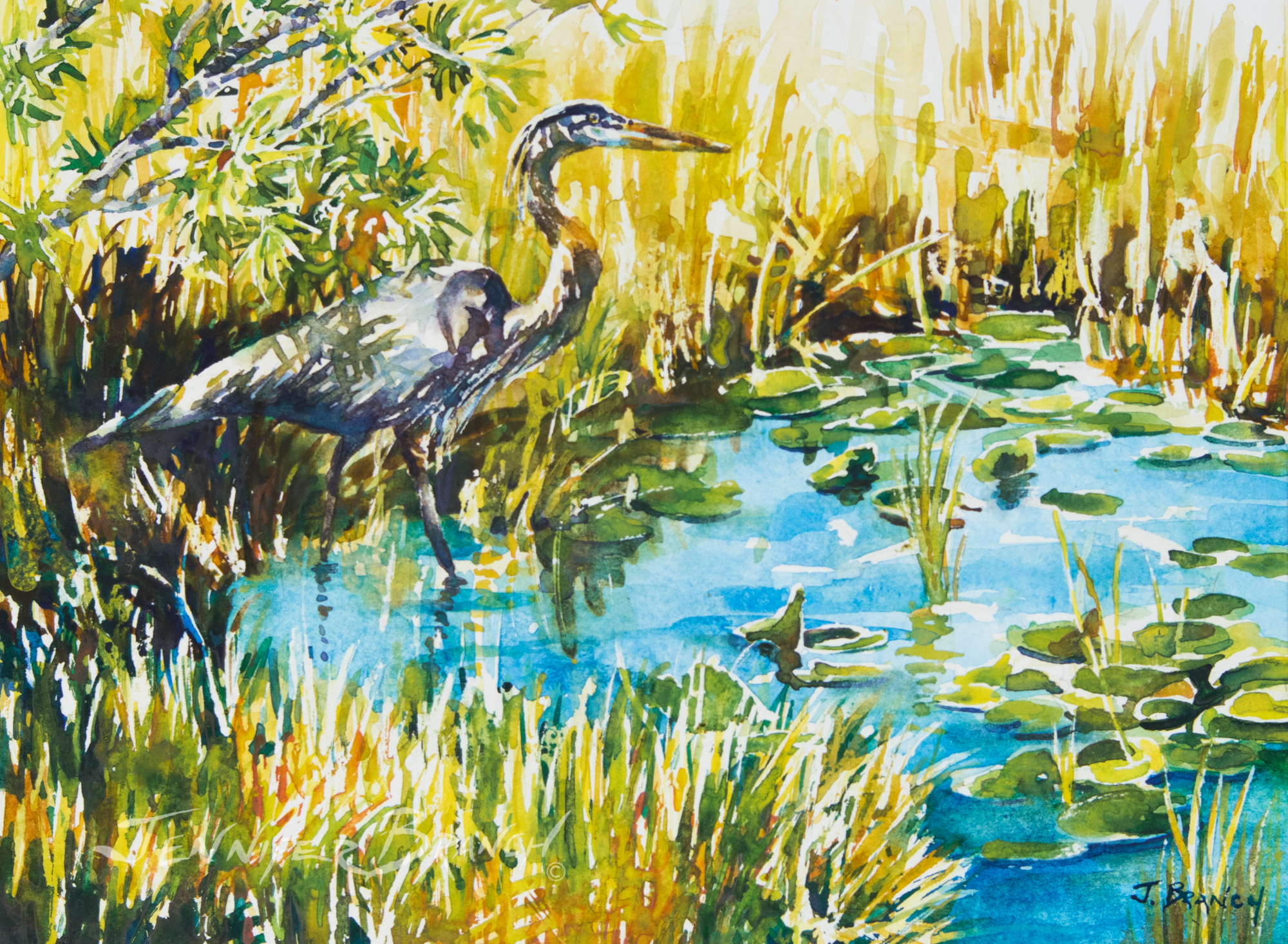 great blue heron watercolor painting