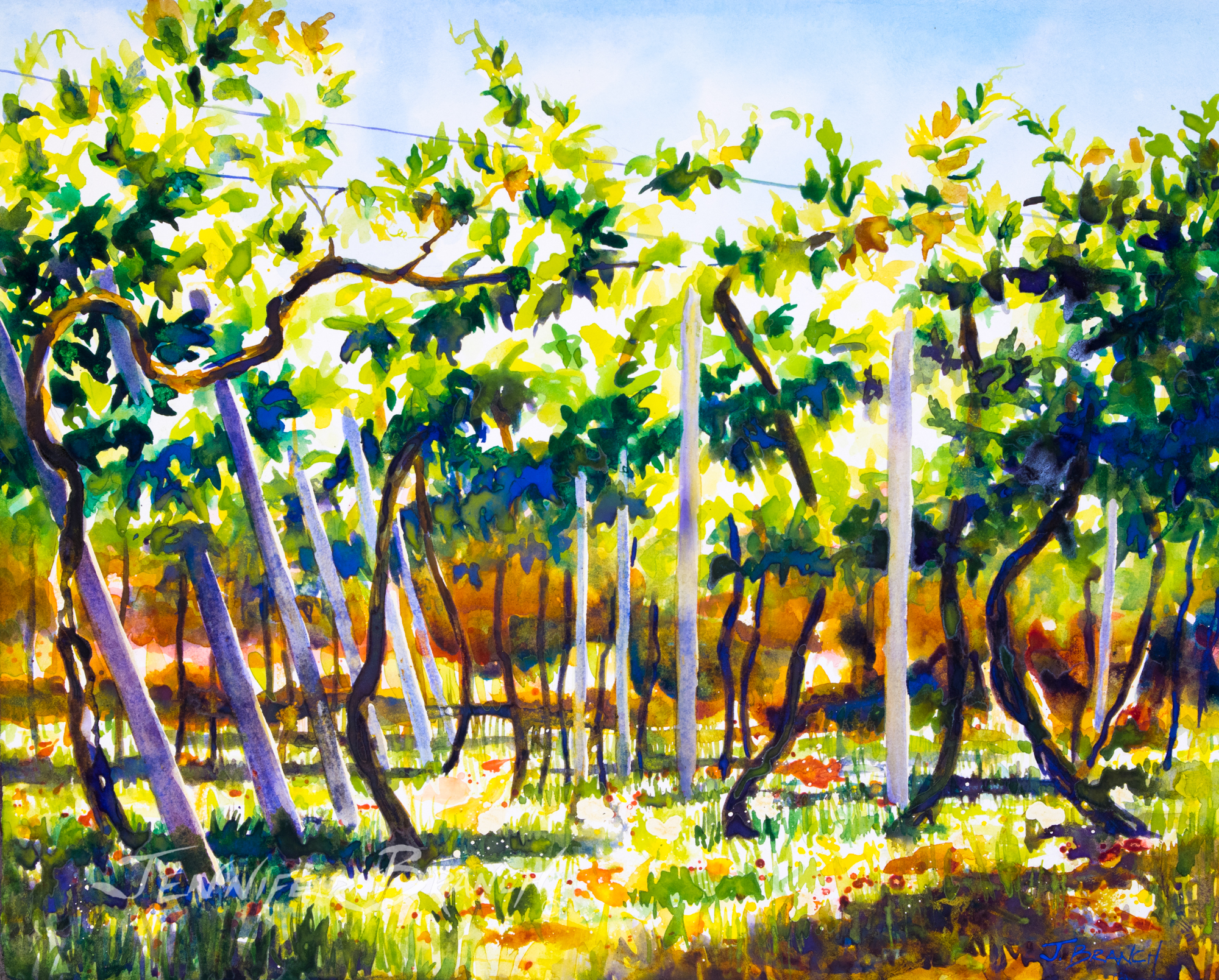 Italian vineyard watercolor painting