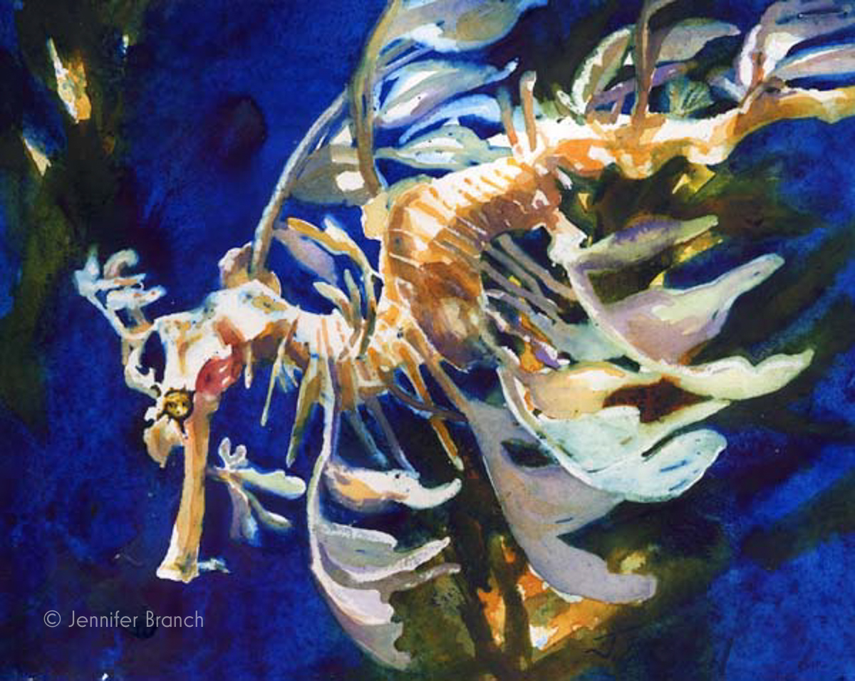 leafy sea dragon watercolor painting by Jennifer Branch.