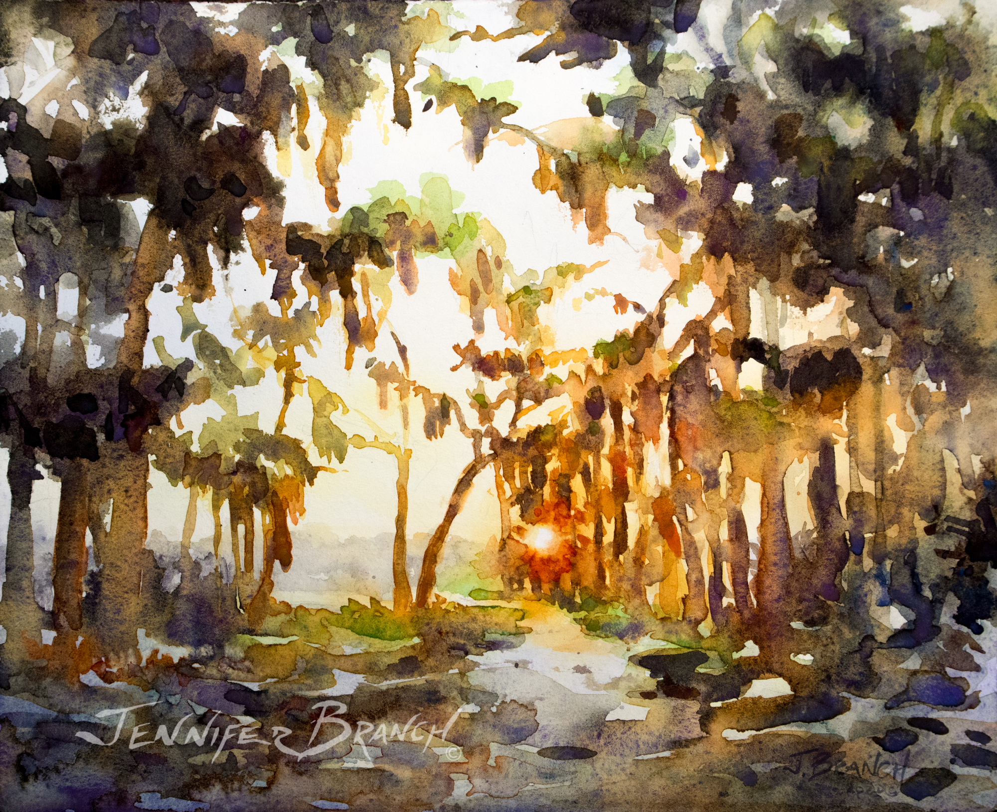 Sunset through live oaks and Spanish moss watercolor painting by Jennifer Branch.