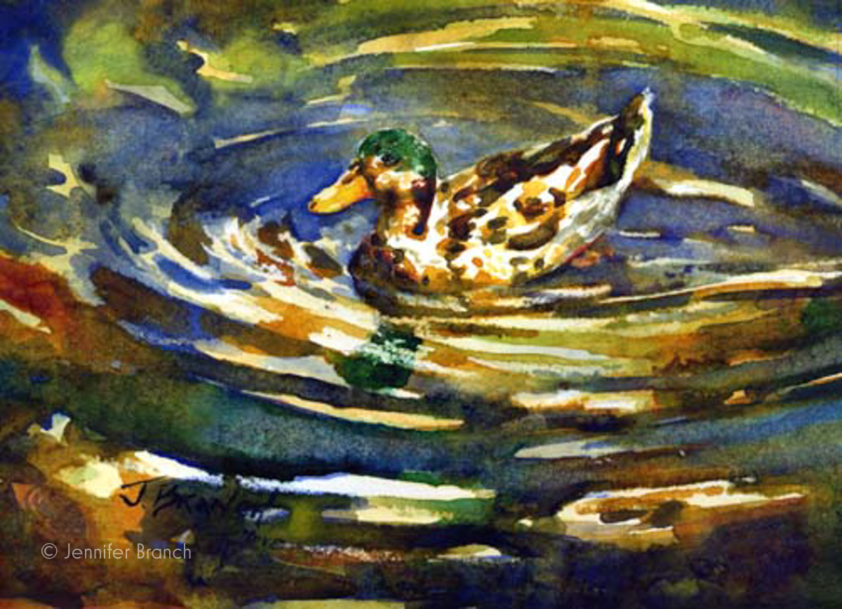 Mallard Duck painting by Jennifer Branch