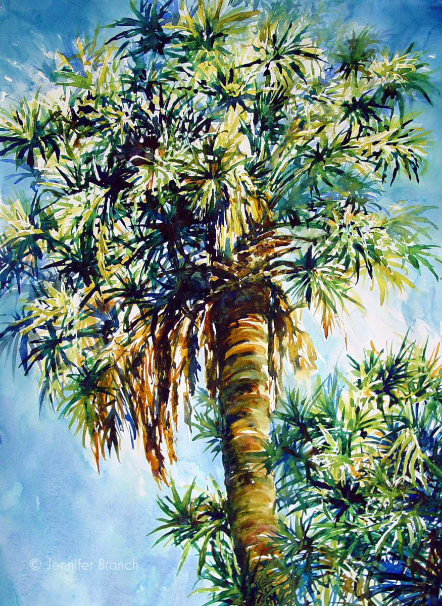 Cabbage palm tree watercolor painting by Jennifer Branch.