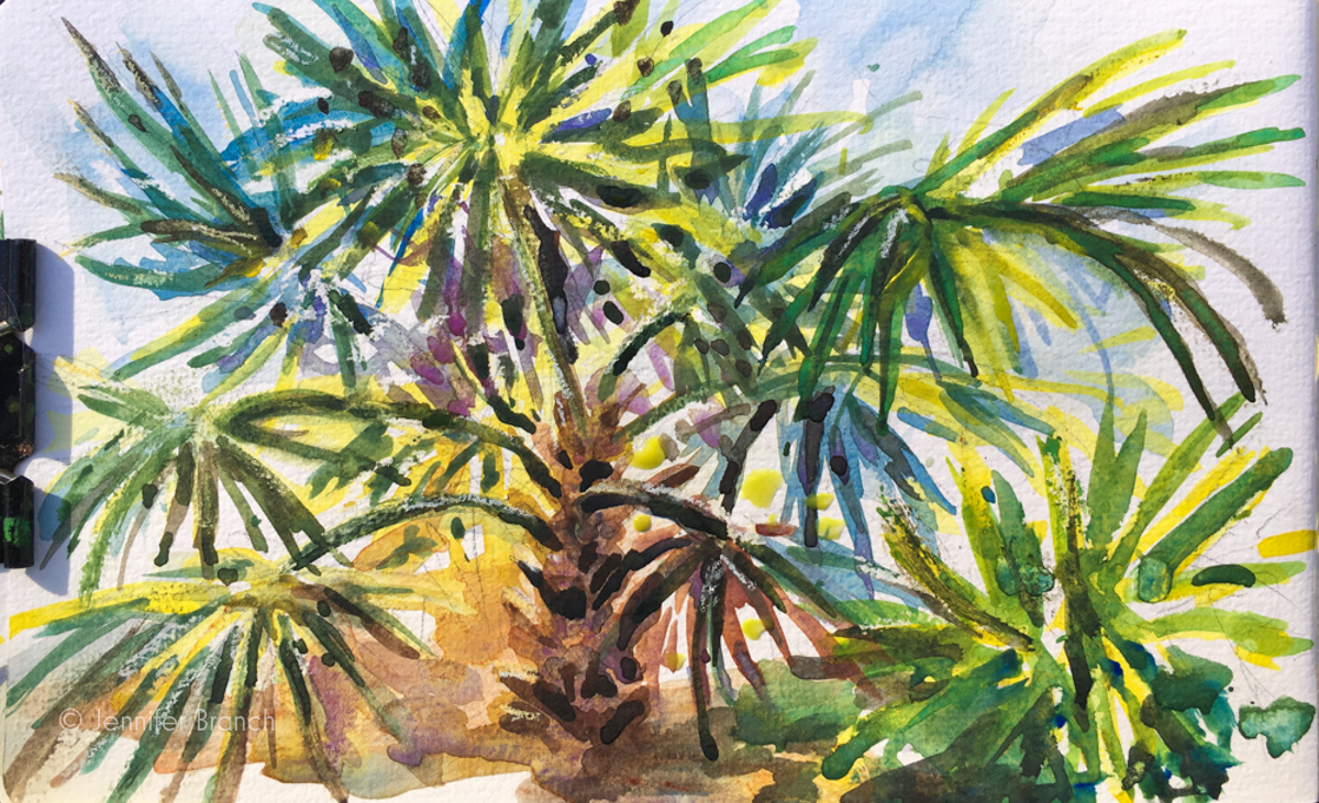 Palmettos watercolor sketch in my journal.