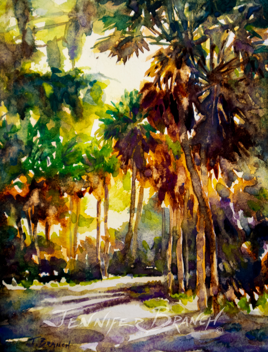 Watercolor painting of dappled sun path between palmetto palms.