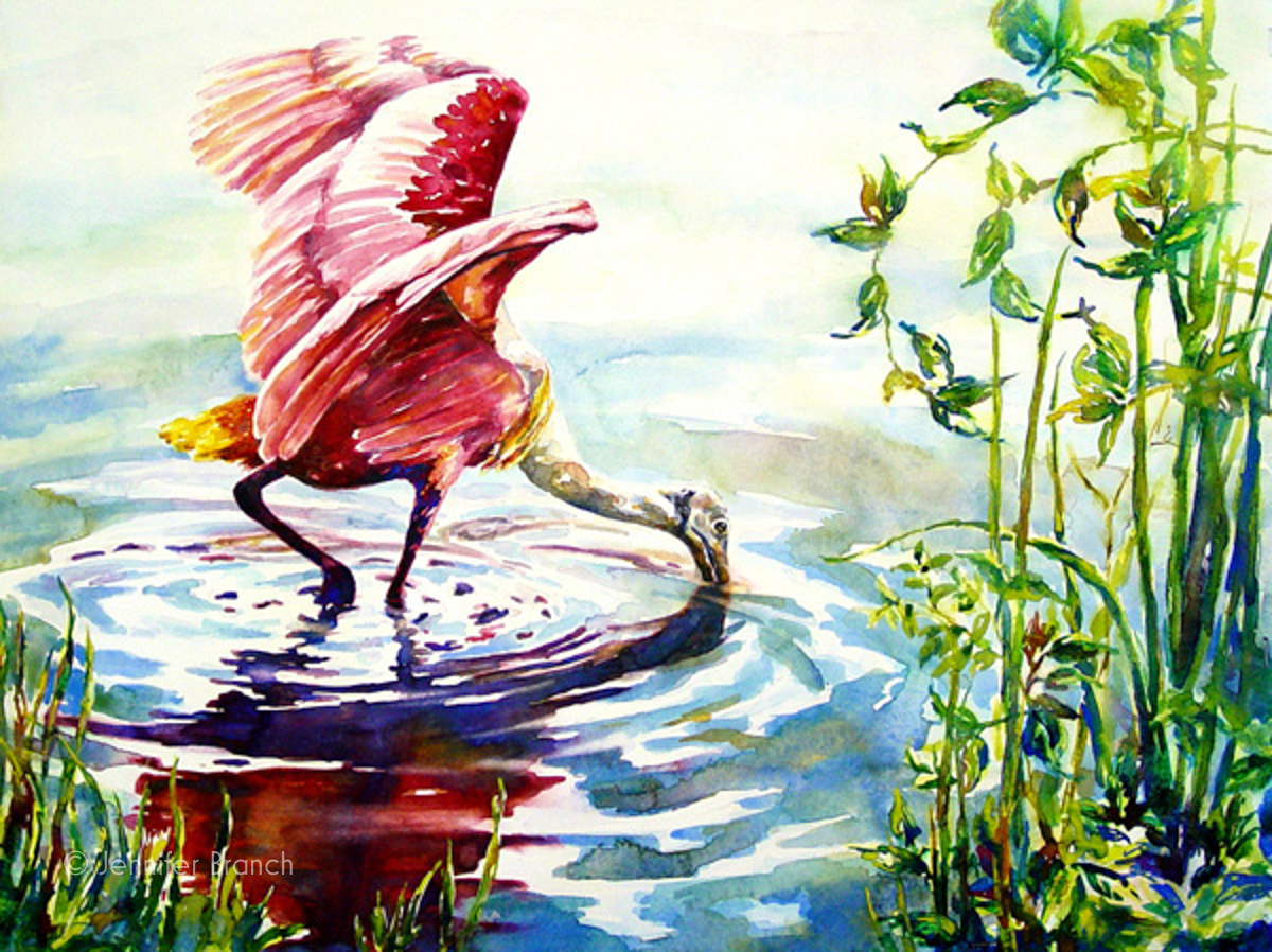 Roseate Spoonbill watercolor painting by Jennifer Branch.