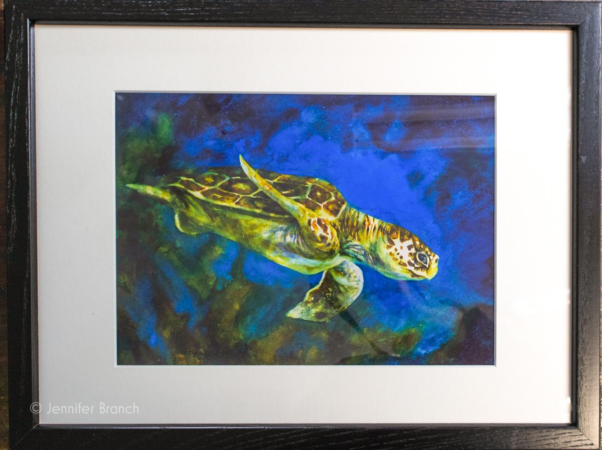 Jennifer Branch Sea Turtle