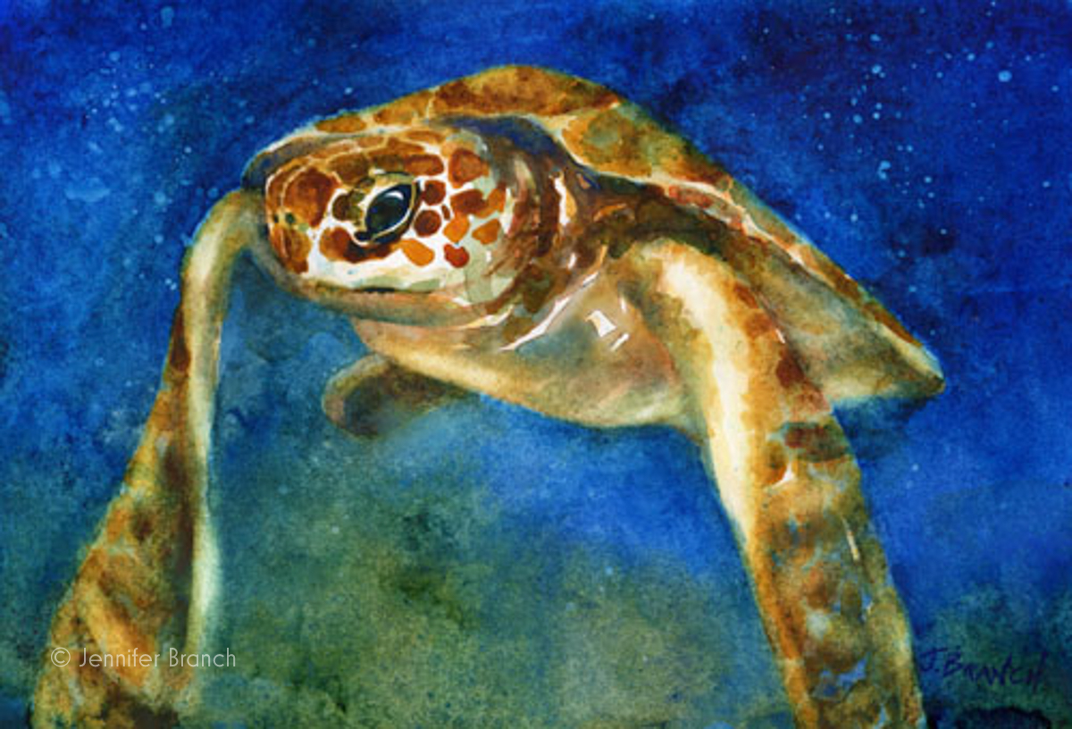 sea turtle hatchling watercolor painting
