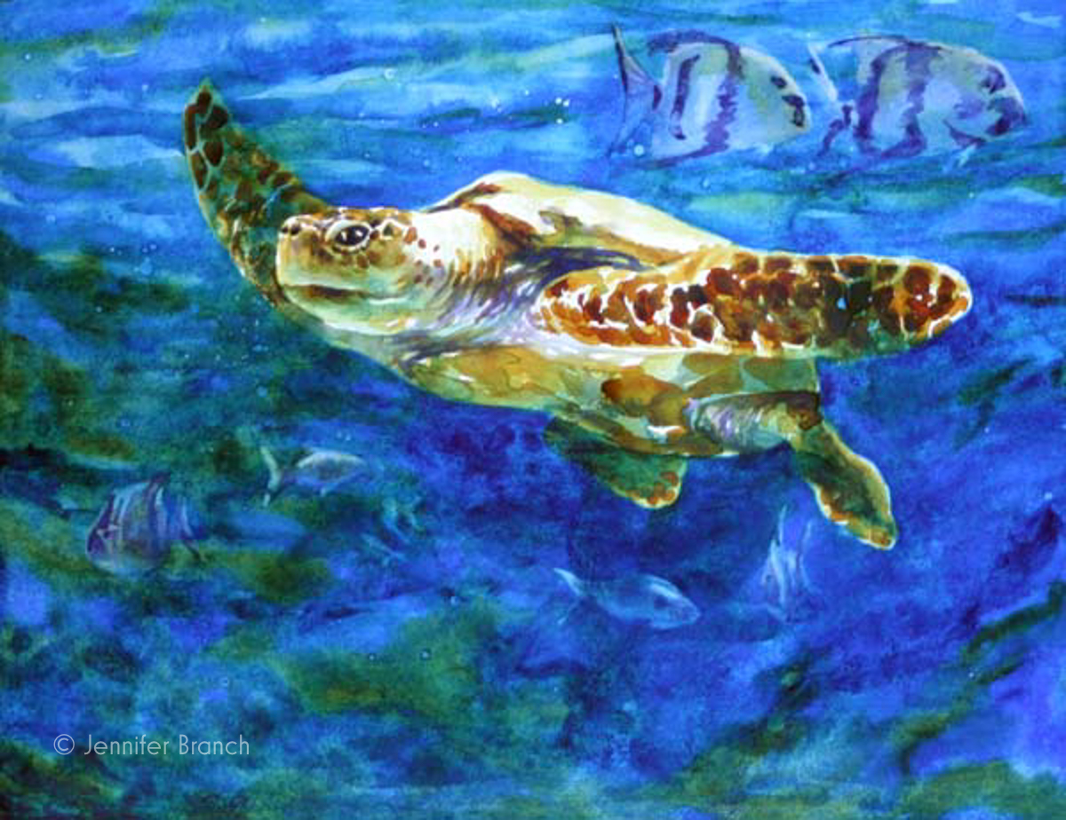 loggerhead sea turtle watercolor painting