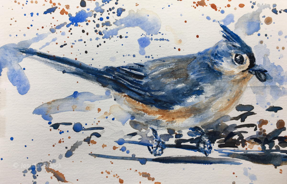 Backyard Bird Sketch, Tufted Titmouse 2 watercolor sketch by Jennifer Branch