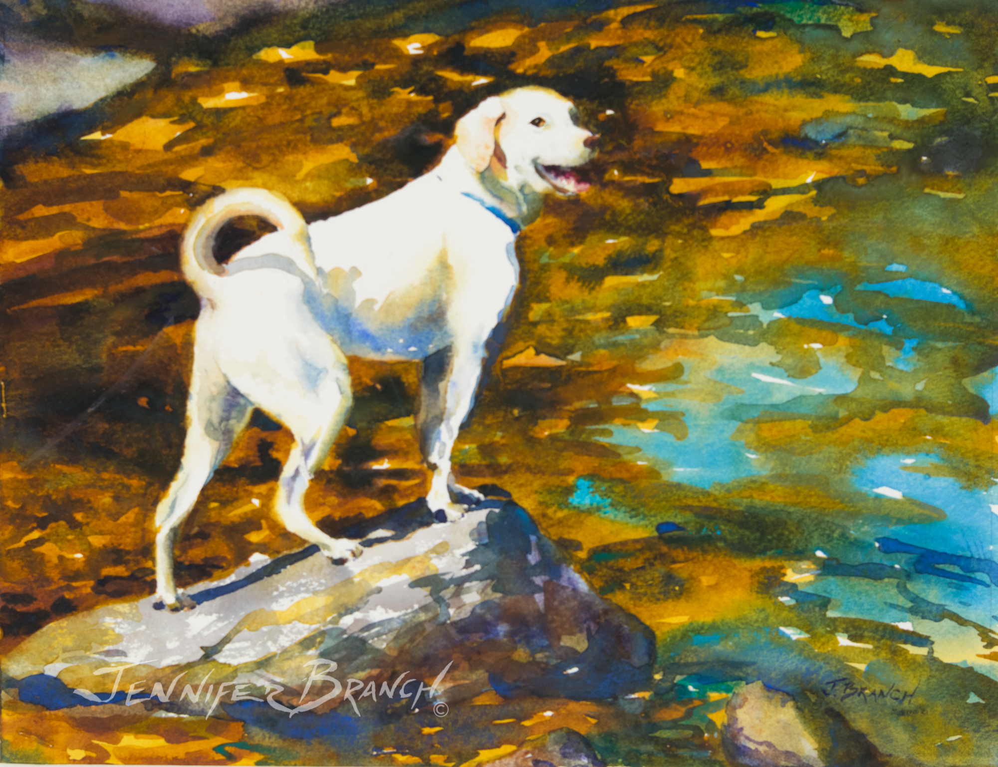 Water Dog watercolor painting