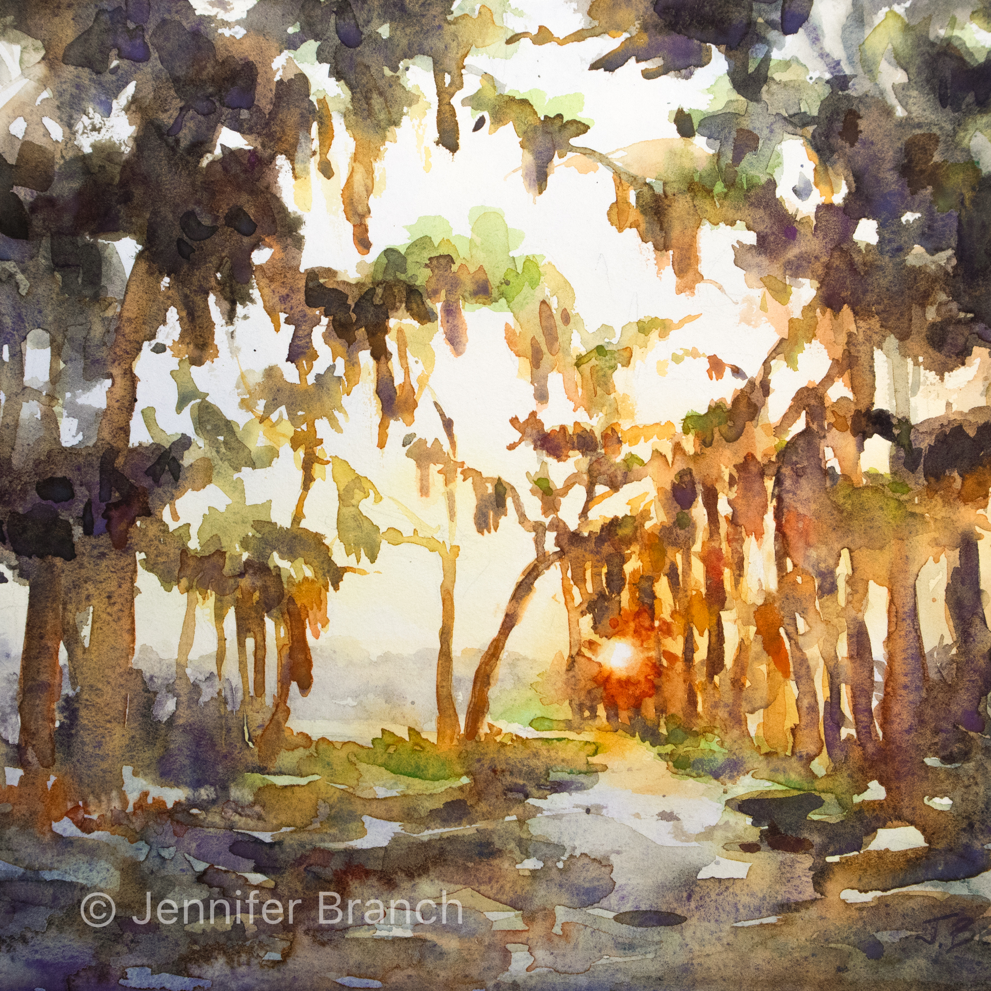 Live Oak Path at sunset watercolor painting.
